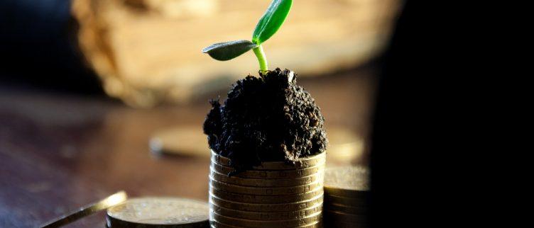 Leren beleggen: hoe moet je starten?