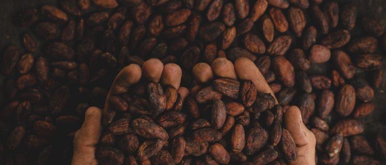 Hoe kan je beleggen in cacao & chocolade industrie?